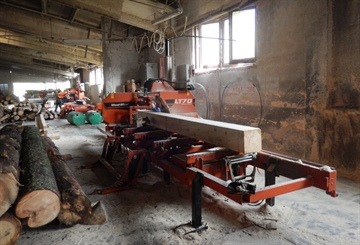 Increasing productivity by upgrading to hydraulic sawmills in Romania